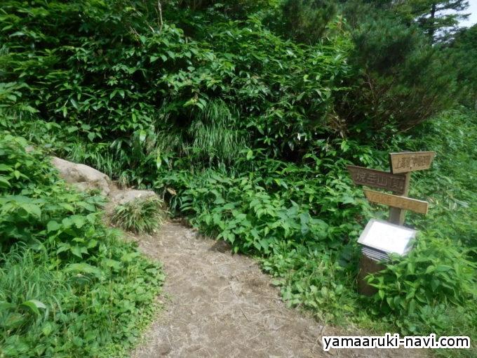 焼岳小屋からの登山口