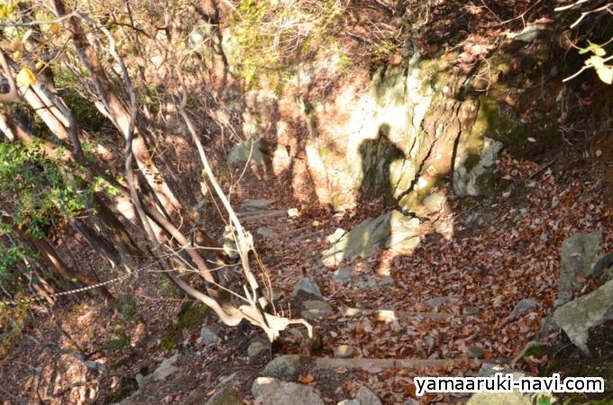 大和葛城山から水越峠の道中