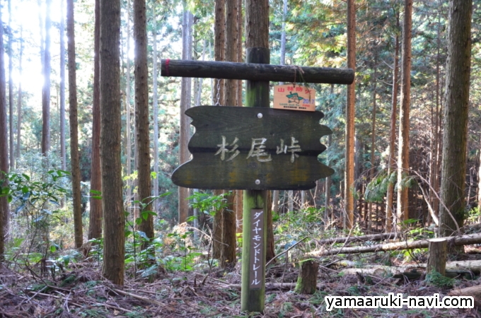 杉尾峠 ダイヤモンドトレール