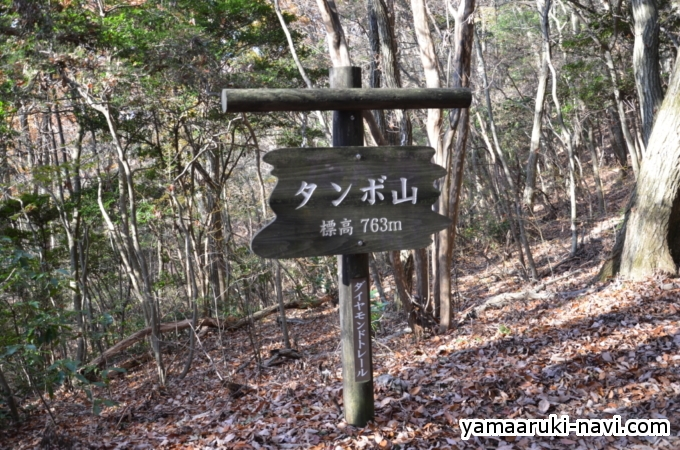 タンポ山道標