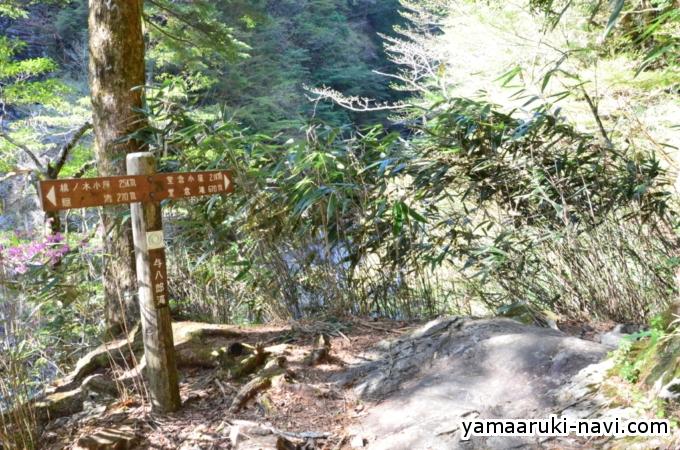 大杉谷 与八郎滝
