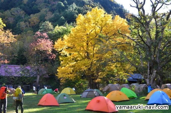 徳澤園 徳沢キャンプ場