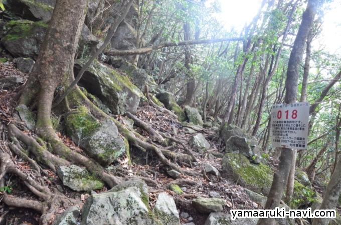 中山越から笹岳
