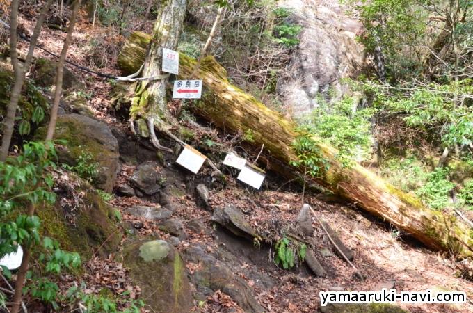 笹岳から多良岳
