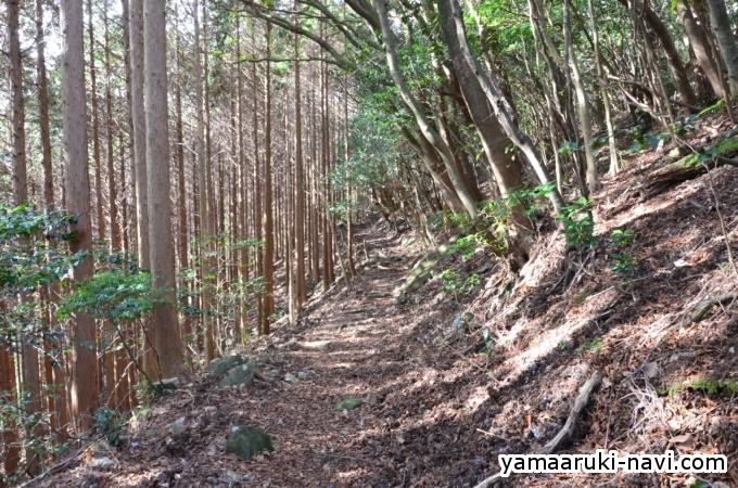 金泉寺山小屋から八丁谷
