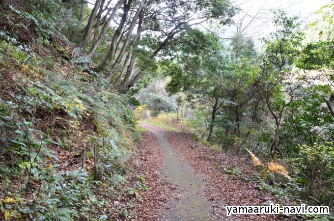 八丁谷から黒木登山口
