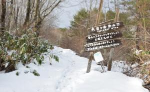 大日ヶ岳 ひるがの高原登山口