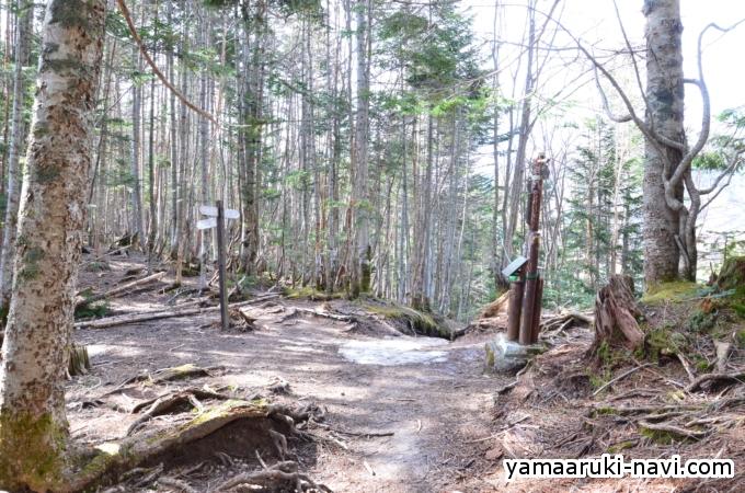 行者小屋から赤岳鉱泉へ 中山乗越