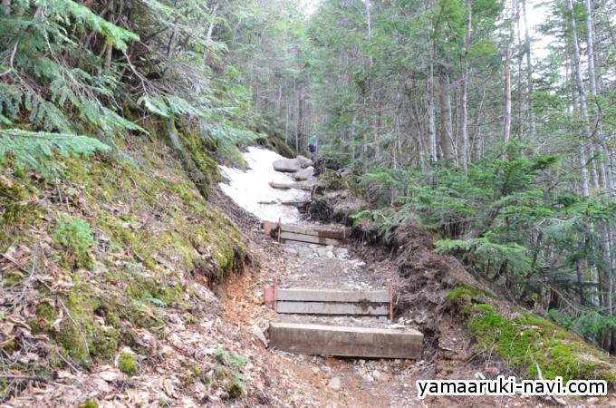 赤岳鉱泉から行者小屋へ