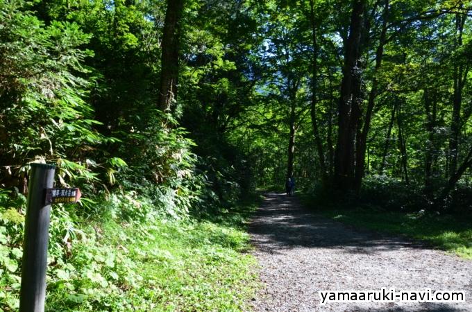 笠新道登山口からわさび平小屋へ