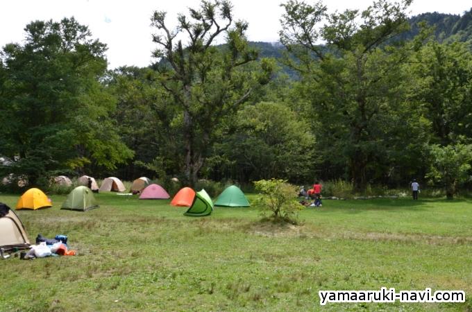 徳澤園 キャンプ場