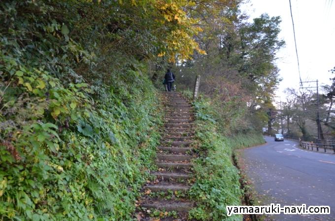 大山夏山登山口から登ります