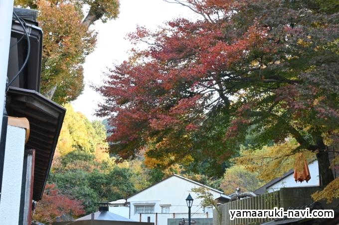阪急箕面駅前から公園の入口(一の橋)までは、お土産物屋さんが並んでいます。