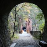 長尾山第1トンネル